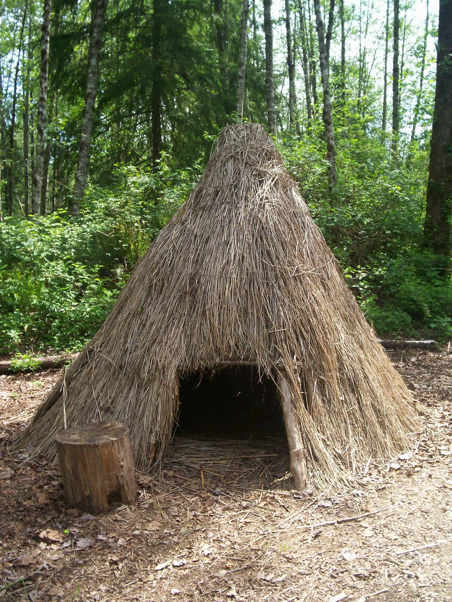 Thatch Hut