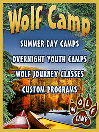 Wolf_Camp_Mini_Cover-200