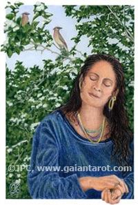 Listening to Cedar Waxwing Bird Song - Artwork by Joanna Powell Colbert