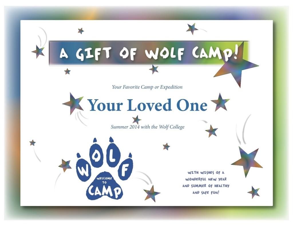 Certificate template summer camp image visual essay example index of wp contentuploads201312 certificategift2014template 1024x790 12 certificate template summer camp image certificate template summer camp image yadclub Gallery