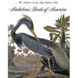 Original Book Cover - John James Audubon Birds of North America