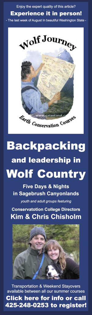 Ad-Blog-Backpacking