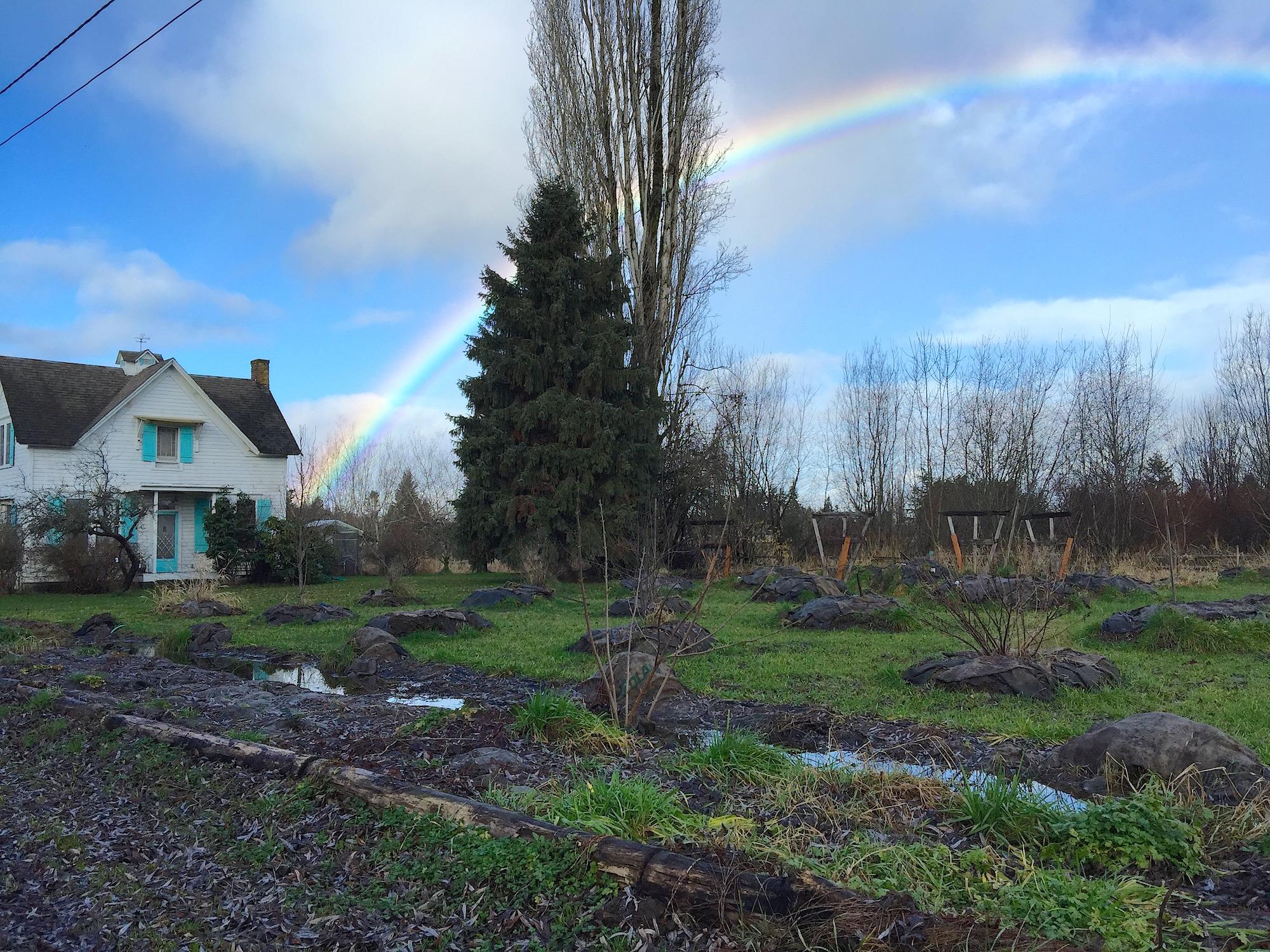 Day 20: Blue Skye Farm Permaculture Design, Blueberry Mulching & Community Garden Installation