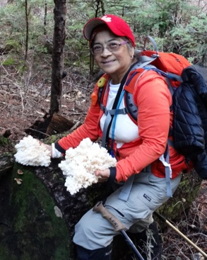 Top 5 Wild Edible Mushrooms for Wilderness Survival in the Northwest