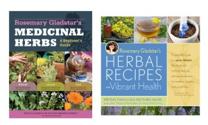 Rosemary-gladstar-medicinal-herbs